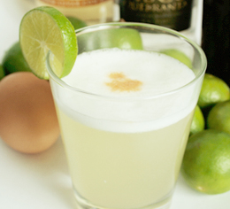 file/recetas/95_thumb_piscosourchico.jpg